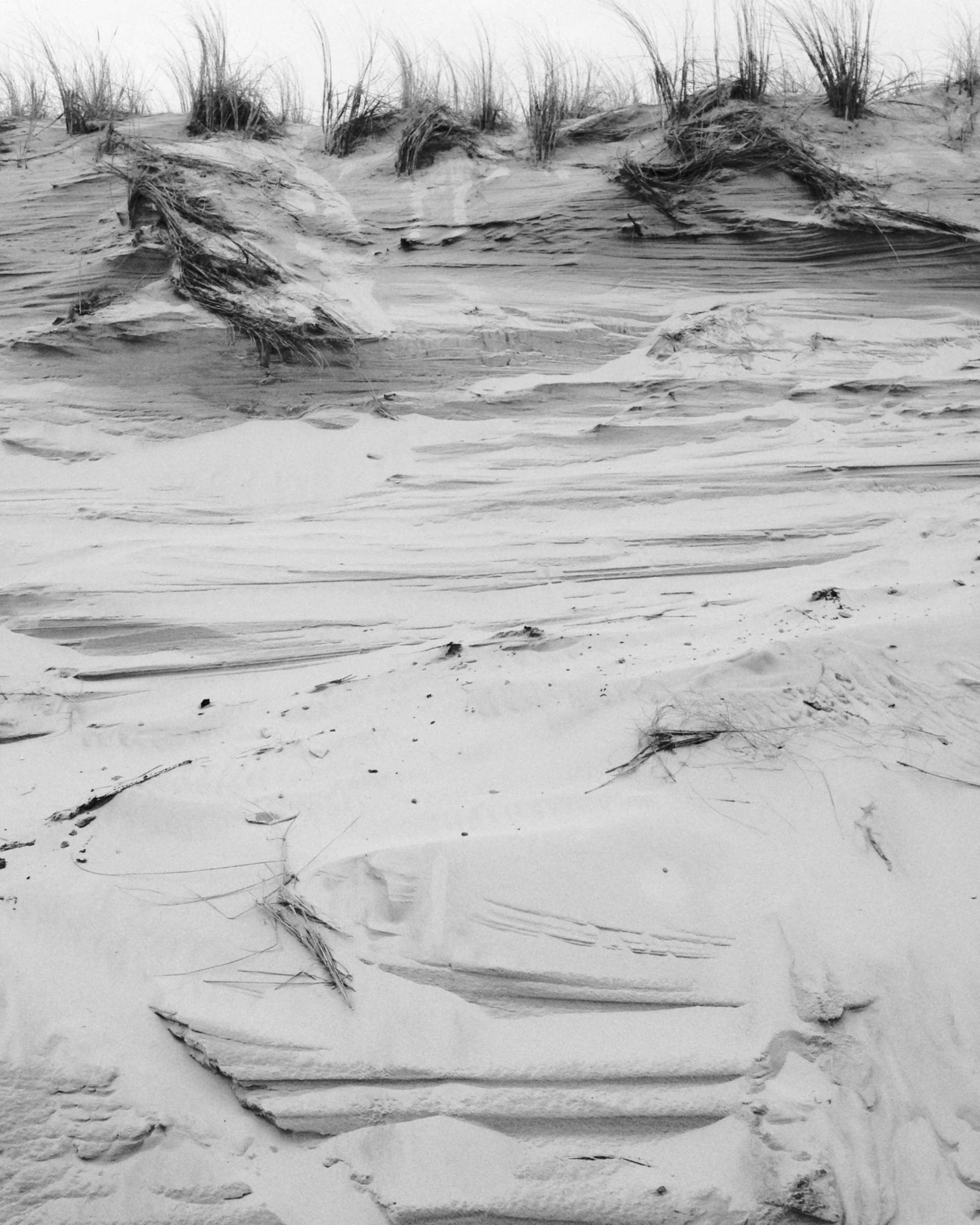Les immortels © Olek Yaro