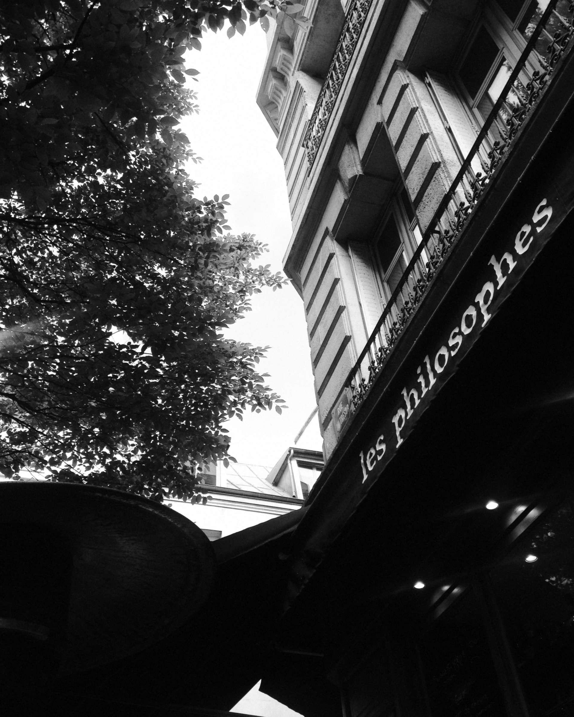 Le chat noir de Paris © Olek Yaro